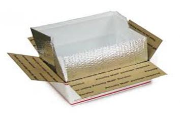 Carton liner